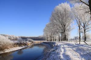 An Der Ems Im Winter