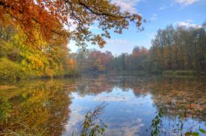 Herbstambiente